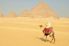 Wakacje w Egipcie – przydatne wskazówki