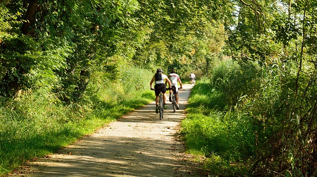 cycling-1696184_640